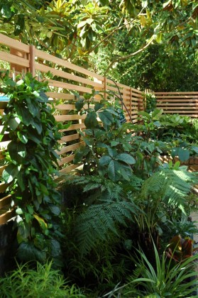 A good neighbour fence in western red cedar trellis
