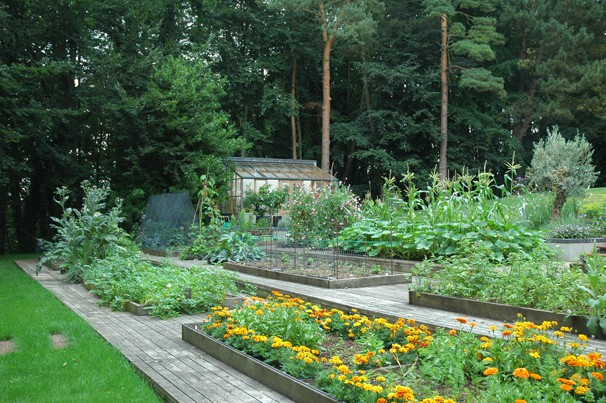 Amazing Kitchen Gardens 606 x 403 · 120 kB · jpeg